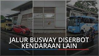 Jalur Diserbot Pengendara Lain, Dua Bus TransJakarta Diadang, Perekam Beberkan Ceritanya