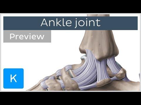Articulațiile piciorului stâng doare ce să facă