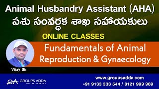 Fundamentals of Animal Reproduction & Gynaecology ll Animal Husbandry Assistant ll Online Classes