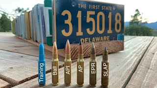 308 Rounds Vs 50 License Plates All 50 States