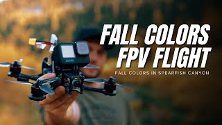 Cinematic FPV Fall Colors - GoPro Hero 10 Black - Spearfish Canyon