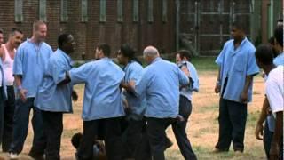 Animal Factory - Trailer