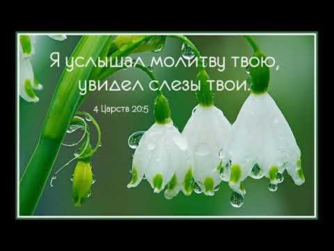 Псков церковь климента