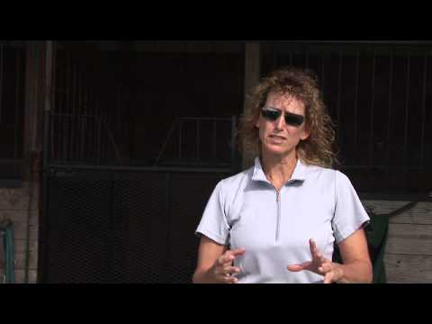 How to Become a Certified Horse Trainer - YouTube