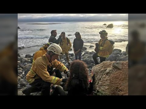 Missing Oregon Woman Found Alive After Car Plunges Down Big Sur Cliff