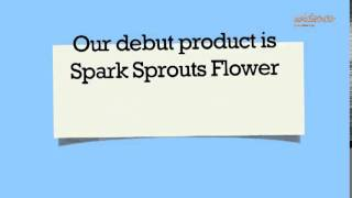 spark sprouts flower - by Wideo.co