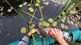 Рыбалка на щуку и сома.