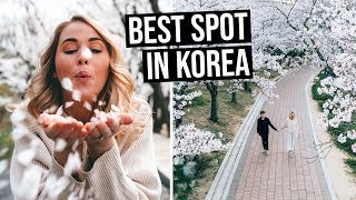 Where to go in busan south korea