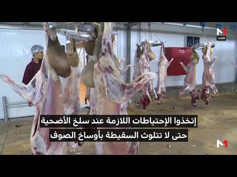 العرب اليوم - شاهد: نصائح عليك اتباعها قبل وبعد عملية ذبح الأضاحي