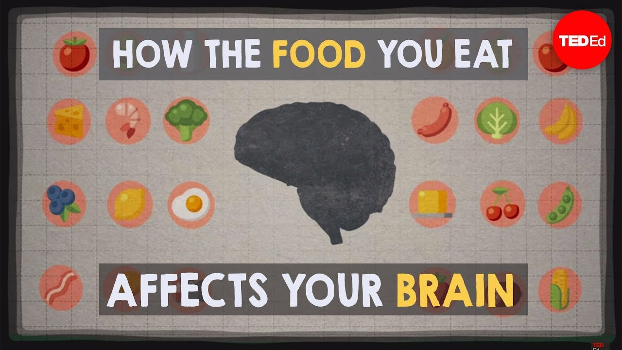 Youtube How The Food You Eat Affects Your Brain