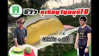 preview picture of video 'รีวิว...ลูกทุเรียนพันธุ์จันทบุรี10 กัน อร่อยเหาะ ฟินมาก... | ลุงหมูป้าตุ้ยพันธุ์ไม้'