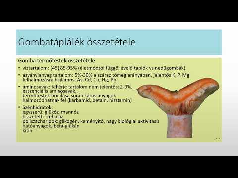 Ascariasis tünetei 10 éves gyermekeknél