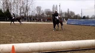 preview picture of video 'HorseBall Eckbolsheim'