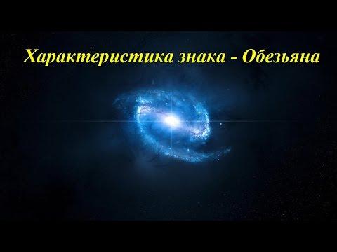 Характеристика знака - Обезьяна