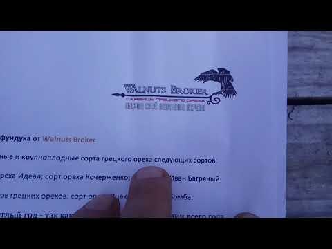Слова благодарности Walnuts Broker за 🌰 орех Иван Багряный.