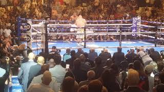 Anthony Joshua vs Andy Ruiz - Round 3 Knockdowns 06/01/19
