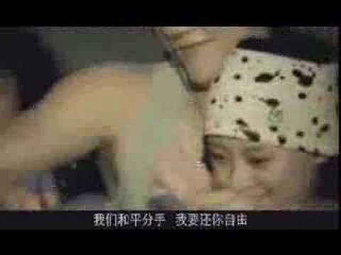 Memory in My Hand (Chinese Version)