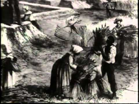 The History of Jim Crow Laws - Part 1