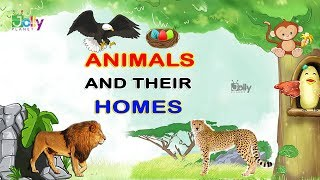 Animals and Their Home Names For Kids In English   Animal Homes    Homes of Animals and Birds