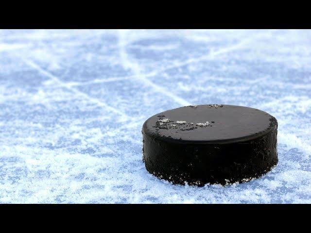 Первенство городского округа Шаховская по хоккею с шайбой