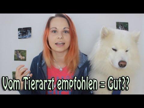 Vom Tierarzt empfohlenes Futter für Hund und Katze = gutes Futter?! Hundefutter & Katzenfutter