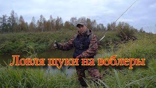 Ловля щуки на воблеры осенью. Река Дубна
