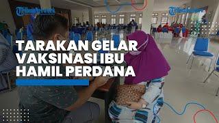 Perdana Kota Tarakan Menggelar Vaksinasi Ibu Hamil dengan Target 387 Dosis di Gedung Wanita