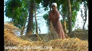 Organic farming at Pakkam Village