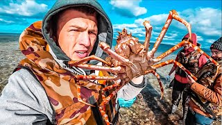 Салюс рыболовная компания сахалин