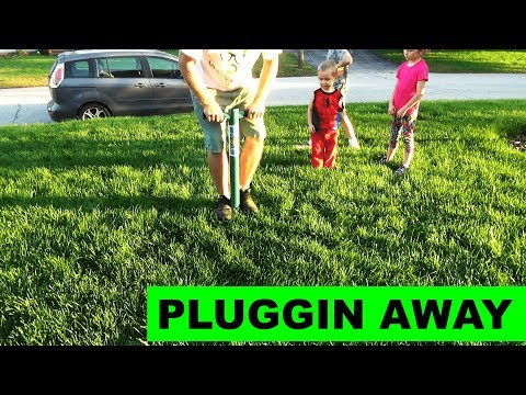 Fall Lawn Plugging - Repairing the lawn the easy way!