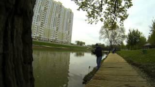 Платная рыбалка в химках новогорск