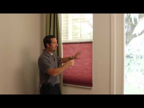 Window Blinds - TriLight Shades by Budget Blinds Tampa