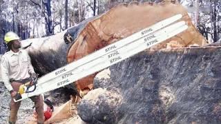 非常に危険な最大の木のモンスターの切断はスキルの編集に失敗し、重い現代のターボチェーンソーマシンが伐採