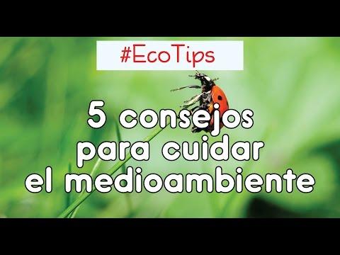 5 Eco Consejos Para Cuidar Del Medio Ambiente