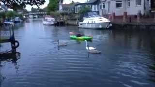 preview picture of video 'Planned River Thames Canoe and Kayak camping trip'