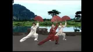 Tai Chi Kungfu Fan Dance