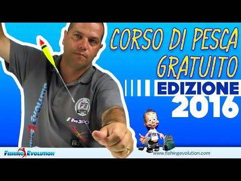 Corso di Pesca Gratuito Livello Base: edizione Promosso e Pesca 2016