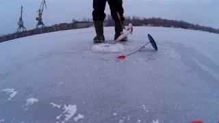 Рыбалка на юрьевском затоне в дзержинске