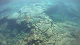 preview picture of video 'Kenkie's Snorkeling Trip To Waiopae Tide Pools'
