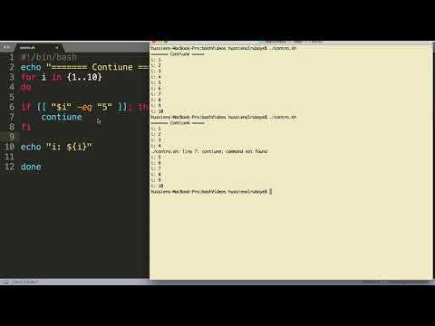 10- Shell Scripting:   Loop Control- التحكم بالعبارات