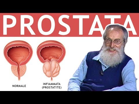 Massaggio prostatico urina torbida