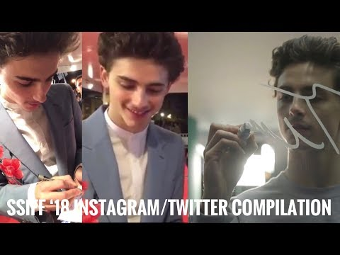 Download Timothée Chalamet Mvff 18 Instagram Twitter