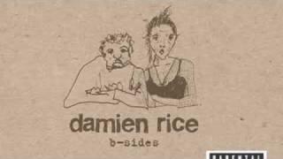 Sex Change - Damien Rice