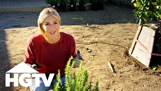 Front Yard Design Tips From Jasmine Roth - HGTV