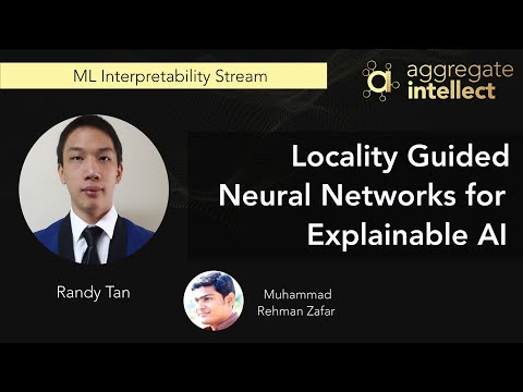 Locality Guided Neural Networks for Explainable AI