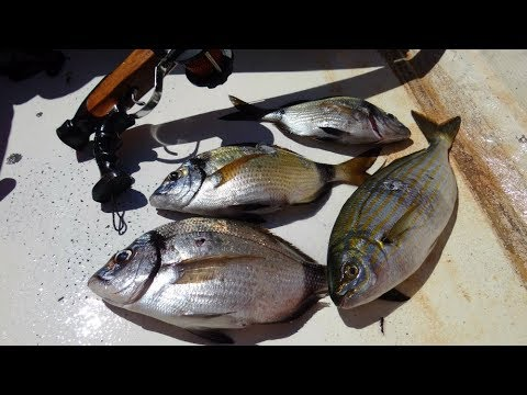 Il divieto di autunno di pesca in Tuva