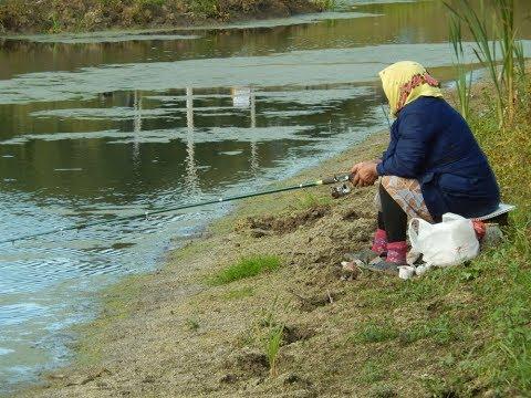 Пришла бабушка на пруд за внуком на обед его позвать...