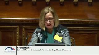 Colette MELOT : Débat préalable à la réunion du Conseil européen des 22 et 23 mars 2018