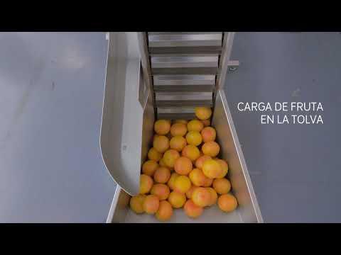 Cómo trabajar con el exprimidor de cítricos industrial Citrus Z450