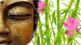 Música Meditacion ,Zen Buddhism